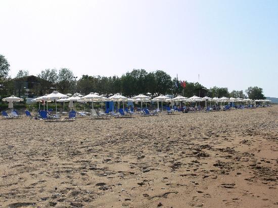 Grecotel Casa Marron: La plage