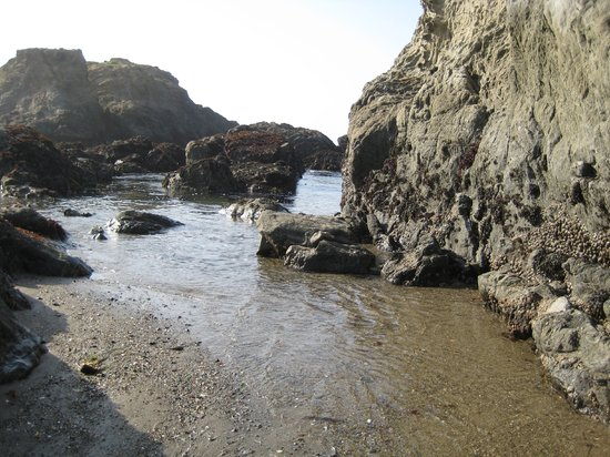 Fort Bragg, CA: Glass Beach-touch the ocean