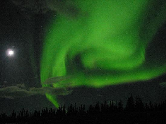 Whitehorse, Canada: Northern lights over Haines Junction