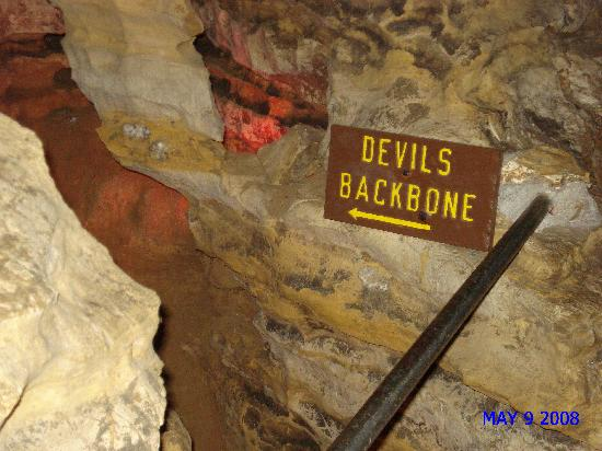 Mark Twain Cave and Cameron Cave : Devil's Backbone