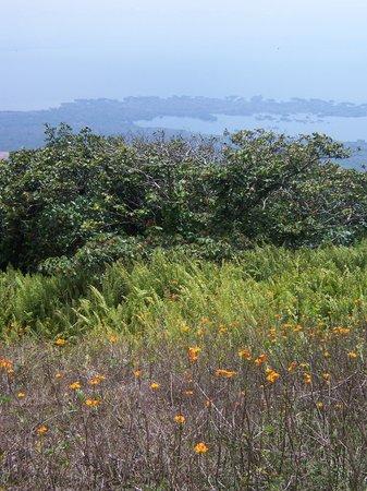 Granada, Nicaragua: Las Isletas