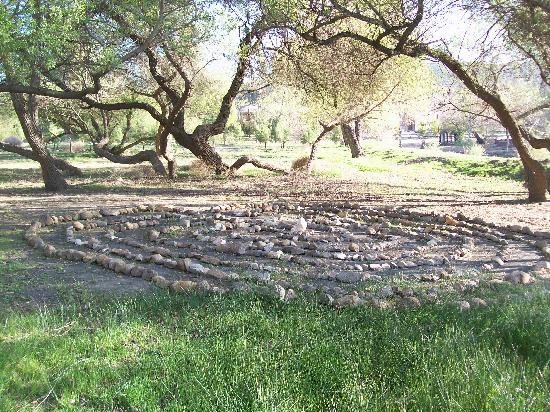 Rancho Los Chabacanos: The Labrynth
