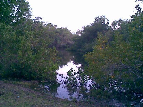 Rock Lake Resort: Billy's Creek Where You Canoe