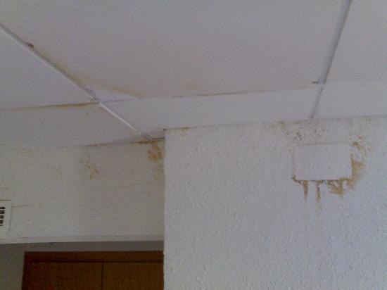 Gran Hotel Don Juan: scorcio artistico di parete e soffitto