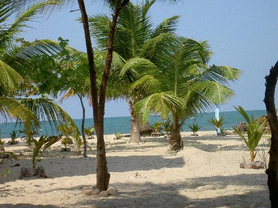 Colibri House: our beach