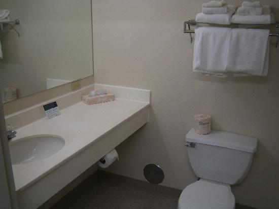 Extended Stay America - Great Falls - Missouri River: The washroom