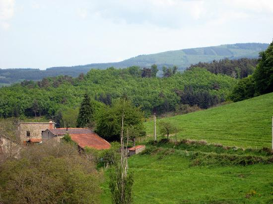 Auvergne, France: In the Montagne Bourbonnaise