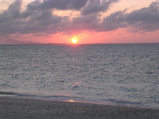 Alexandra Resort : Sunset