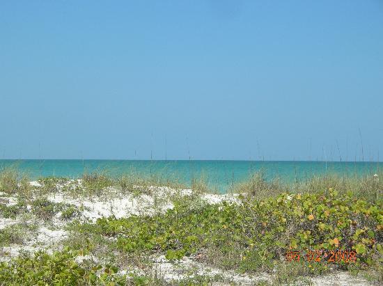 Gulf Tides Inn: The beach