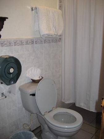 Hotel Posada Dona Luisa: Washroom
