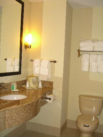 Comfort Suites Airport: Bathroom