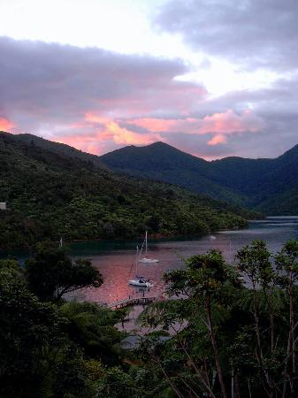 Punga Cove Resort: View from balcony at sunset