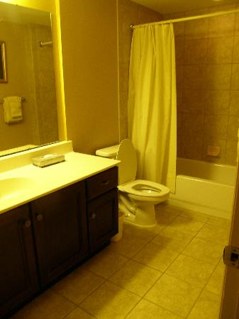 Wyndham Old Town Alexandria: Guest Bathroom