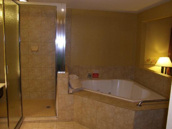 Wyndham Old Town Alexandria: master bath 1