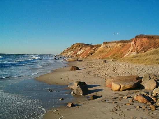 Martha's Vineyard, MA: Beach Vineyard