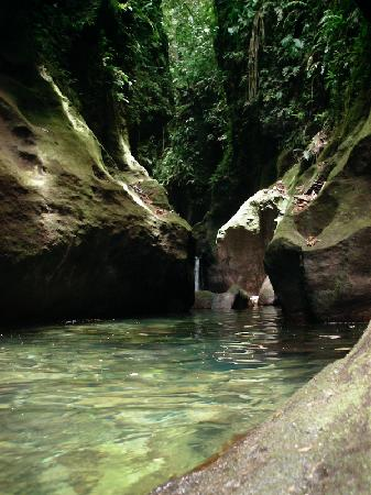 Extreme Dominica Canyoning Experience: Inside the Gorge