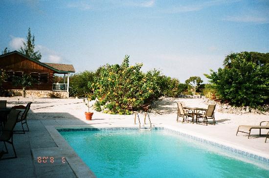 Sammy T's Beach Resort: Pool at Sammy T's