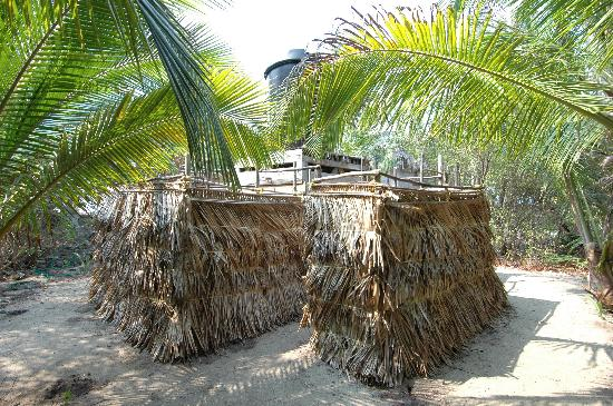 Long Caye Resort: Gilligan's island style showers