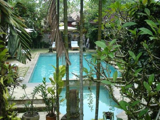 alam jiwa pool