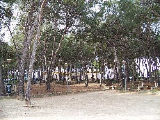 Hotel Celo Garden: Durch einen kleinen
