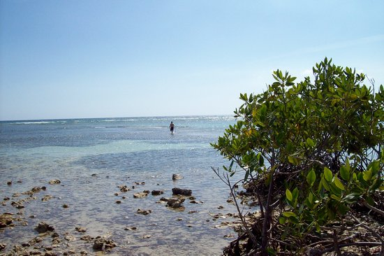 Trinidad, Cuba: walking out on the reef