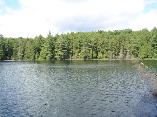 Algonquin Provincial Park, Canadá: Canisbay Lake