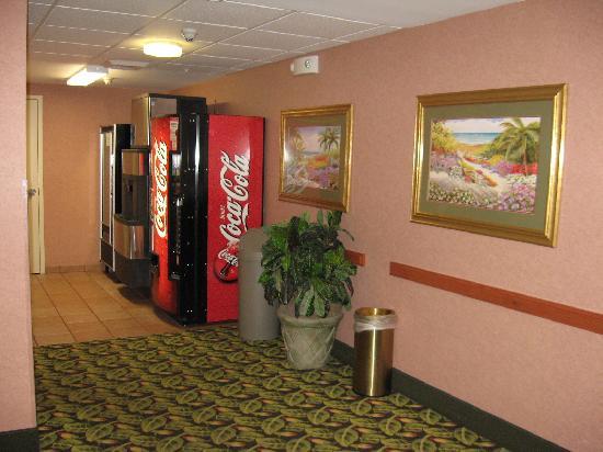Hampton Inn Ft. Lauderdale-Commercial Blvd.: Third floor hallway by elevator