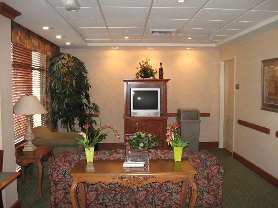 Hampton Inn Ft. Lauderdale-Commercial Blvd.: Lobby sitting area