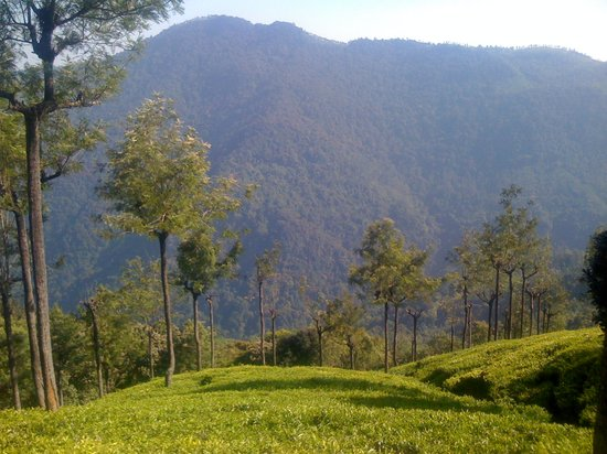 Coonoor, Indie: Queen of Hill Station