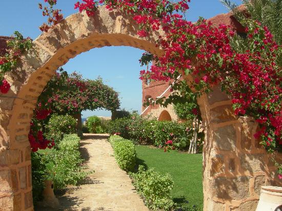 Balconi case e giardini in fiore a piana crixia arriva la giuria