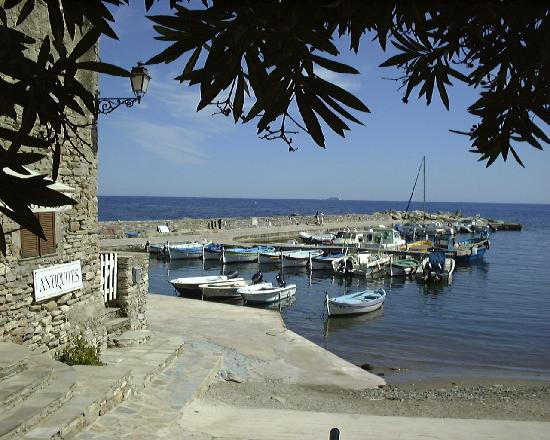 Brando, Frankreich: the port of Erbalunga