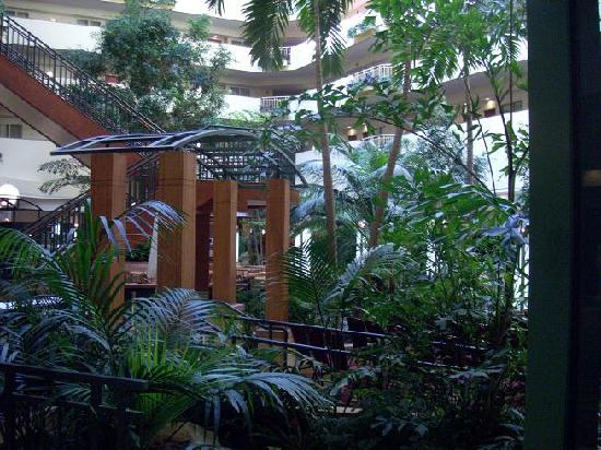tampa - Embassy Suites Hotel Usf Busch Gardens