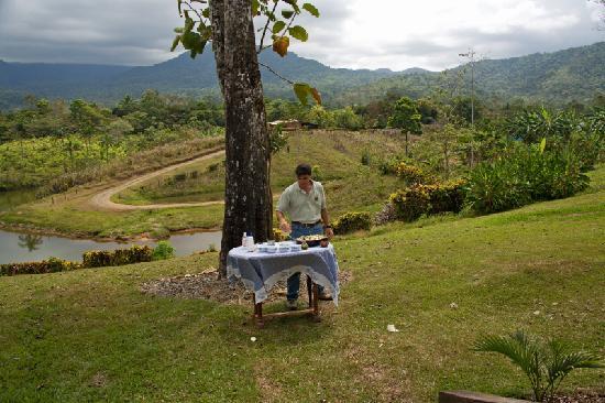 La Anita Rainforest Ranch : Pablo's Cooking Lesson - Heart of Palm Ceviche