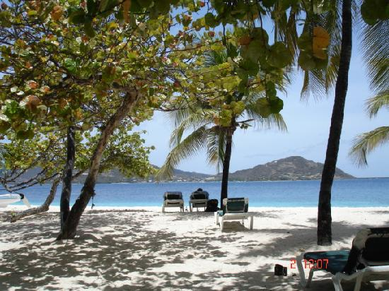 Palm Island Resort & Spa: beautiful beach 2