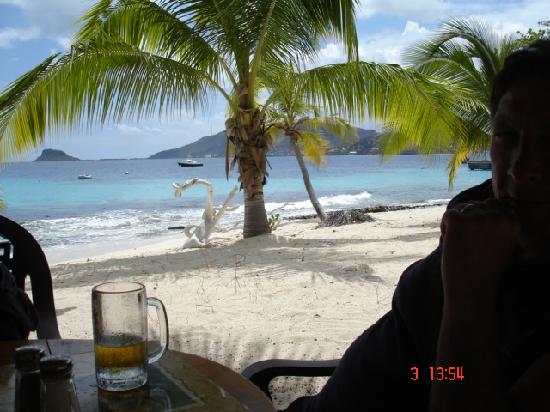 Palm Island Resort & Spa: lunch at Sunset Grill