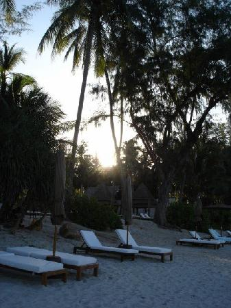 SALA Samui Choengmon Beach Resort: sunloungers on beach