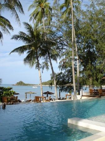 SALA Samui Resort And Spa : pool with view of sea