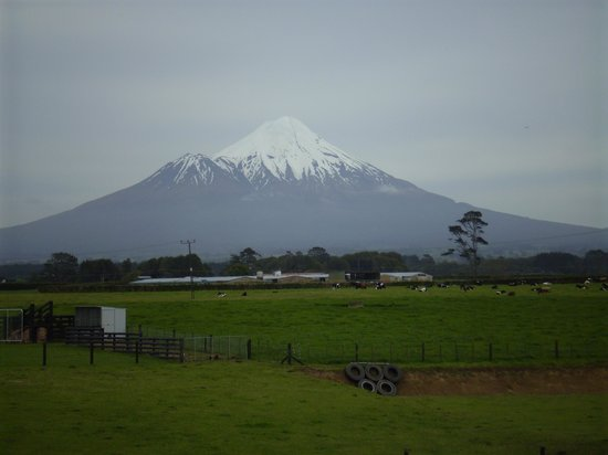 Masonic Tavern : Mt Taranaki in (NZ) Spring