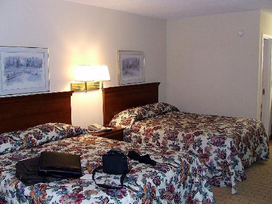 Econo Lodge Inn & Suites: Bedroom View 1