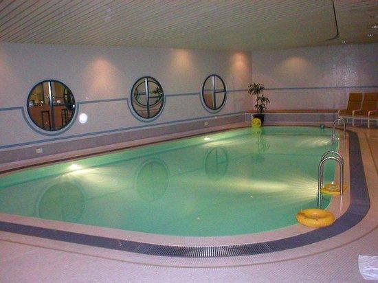 Swissotel Le Plaza Basel: Pool