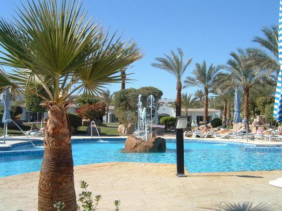 Hilton Sharm Dreams Resort: General main pool shot