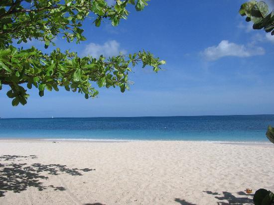 Coyaba Beach Resort: Grand Anse from Coyaba