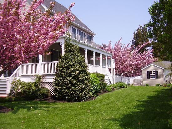 Saltwood House: im ort