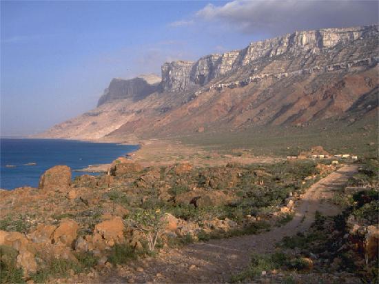 Nishtun, תימן: Socotra Island