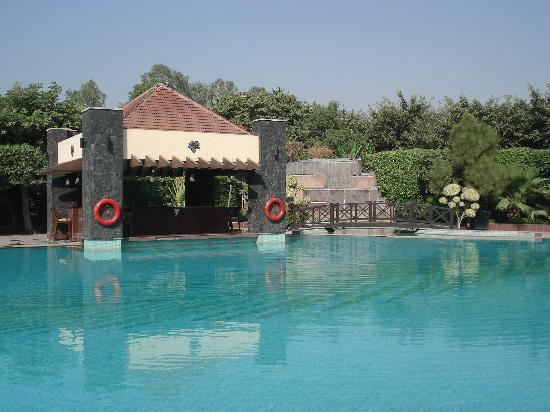 The Uppal Hotel - an Ecotel Hotel: The large, clean pool