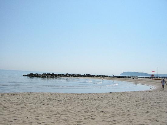 Matrimonio Spiaggia Misano Adriatico : Spiaggia di misano foto adriatico provincia