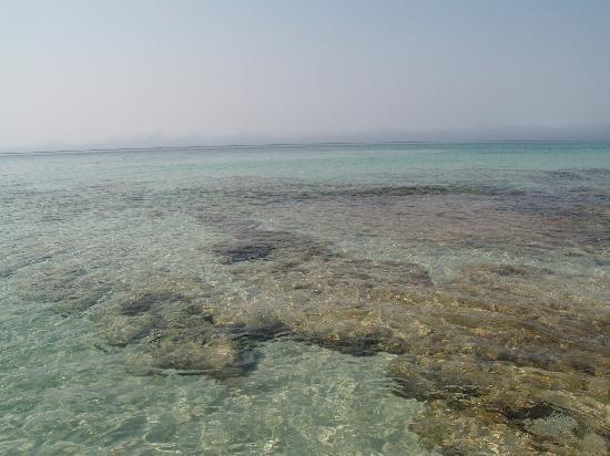 Real Playa : Mare Formentera