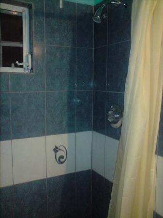 LambLion Holiday Apartments: Shower