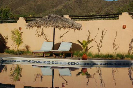 Casa Caracol : Pool Lounger