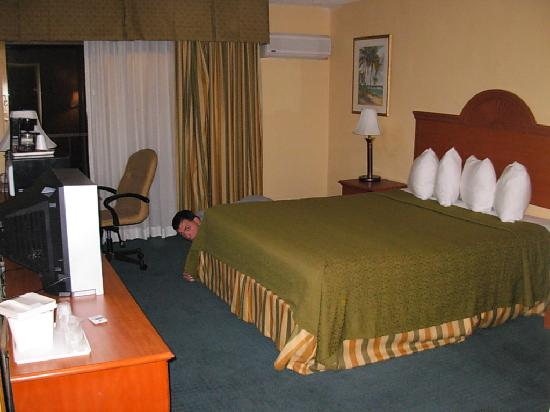 BEST WESTERN Oceanside Inn: The bed -- nevermind the man behind it, he's only in my room.